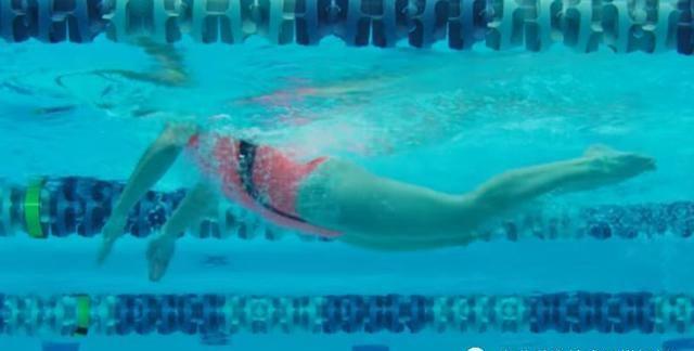 蛙泳上半身怎么能起得高一些?抱水划水动作分解讲解