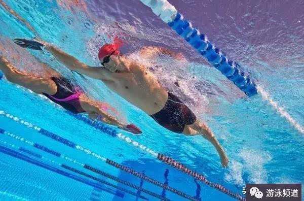 自由泳初学者需要学习的三大基本动作,打腿,划水,换气