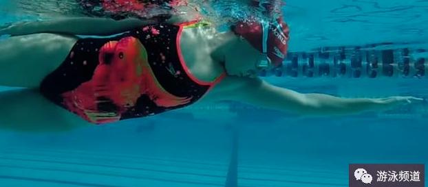 自由泳划水与身体侧转的关系