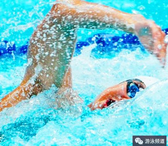 游泳有几种姿势?