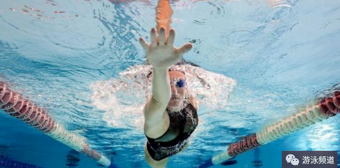 自学自由泳,先理解这几个动作的概念