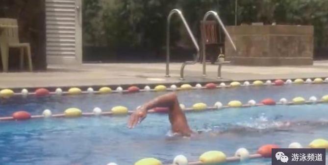 这几个动作反复练习,自由泳初学者成为游泳老手指日可待