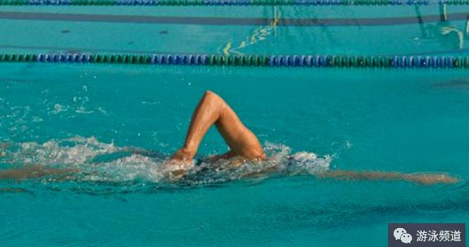 自由泳快速入门,游进效果立竿见影
