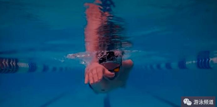 自由泳技术动作图解
