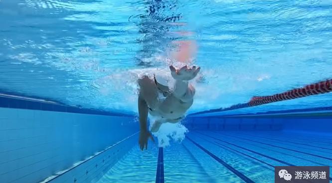 自由泳的划频与划距,对提高速度很关键
