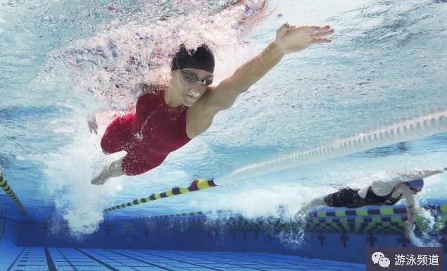 """5天学会自由泳,学自由泳的步骤"""""""