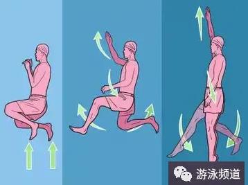 侧泳教学,侧泳的腿部技术和身体姿势
