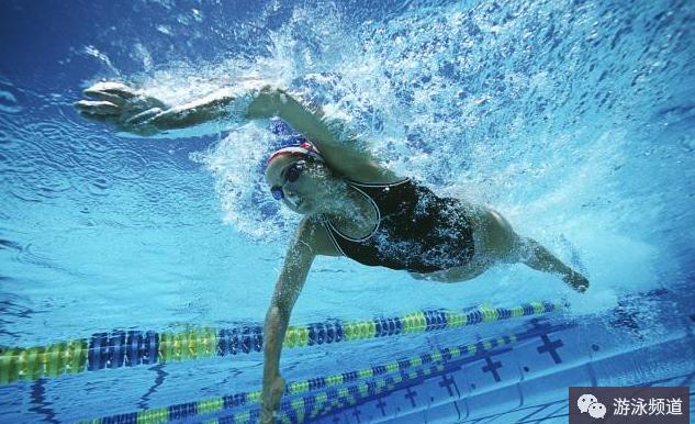 自由泳高肘抱水是什么?怎么高肘抱水?