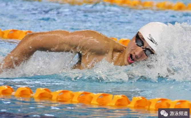 蛙泳和自由泳的区别_自由泳比蛙泳难学吗?