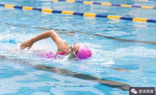 这两个动作,帮助你自由泳划水更轻松