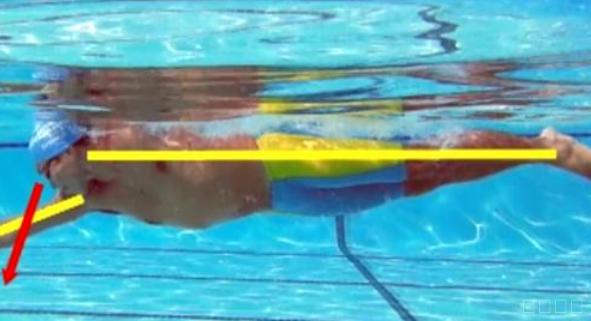 自由泳提升划水与下肢配流畅度