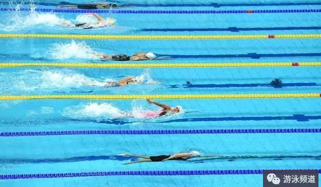 自由泳划手如何更有力?要这样训练