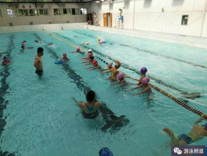 新手学游泳,要注重基础动作的分解练习