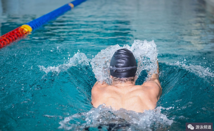 想游泳减肥的看看,四种游泳姿势的塑身部位