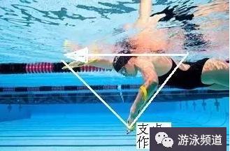 自由泳手臂的支点作用