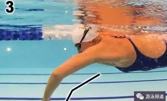自由泳高肘抓水技术